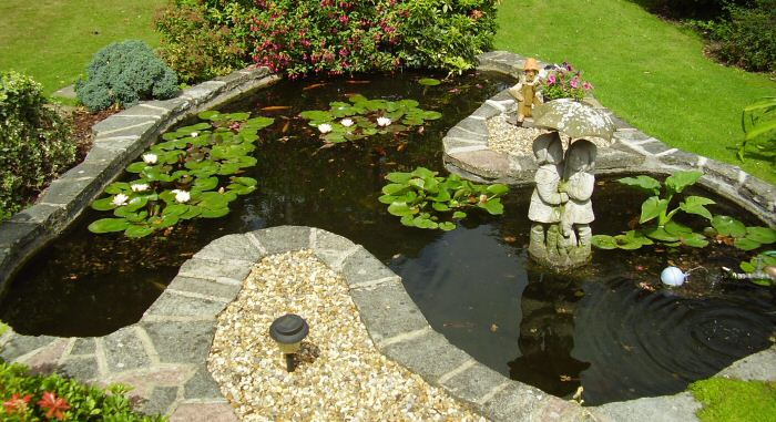 Customer pond now free from Blanketweed